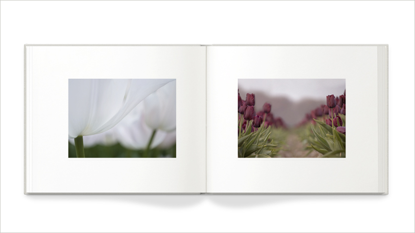 13x11 photo book 13x11 art book on flower