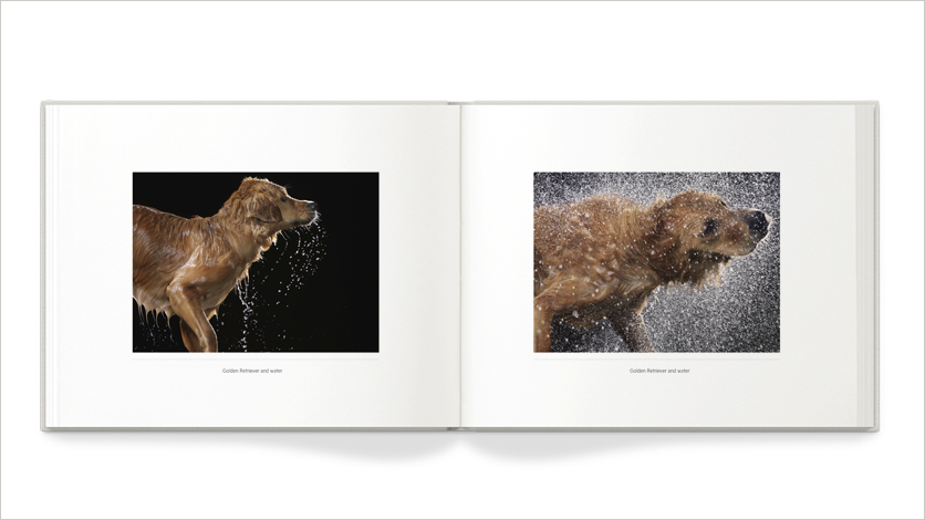 10x8 pet photo 10x8 pet photo books