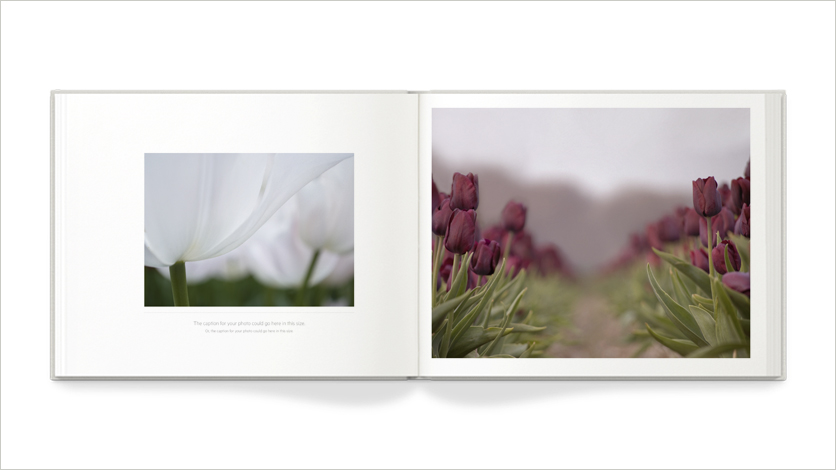 tailor made multipurpose photo book -10x8 multipurpose flowers photo book
